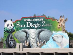 Evelyn Brooks Designs is now sold at the San Diego Zoo